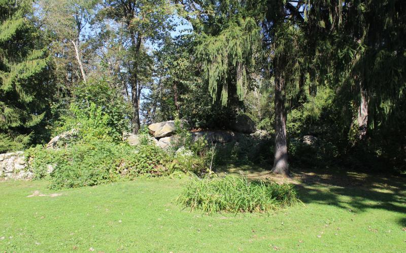 Davidson Park